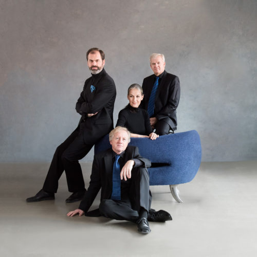 Martinu Quartet blue and black, blue nest_autor Petra Hajská